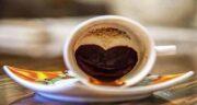 برگ انجیر در فال قهوه ؛ معنی و تفسیر دیدن برگ انجیر در فال قهوه چیست