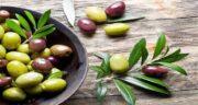 برگ زیتون برای فشار خون ؛ تاثیر جادویی استفاده از برگ زیتون برای کاهش فشارخون