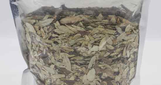 برگ سنا برای بواسیر ؛ فواید درمانی استفاده از برگ سنا برای بیماری بواسیر