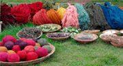 برگ مو در رنگرزی ؛ استفاده از برگ مو به عنوان رنگ طبیعی در رنگرزی