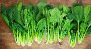برگ چغندر برای دیابت ؛ تاثیر مصرف برگ چغندر برای تنظیم قند خون