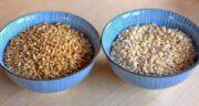 جو و گندم ؛ بررسی و مقایسه خواص و ارزش غذایی جو با گندم