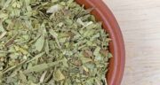 خواص برگ سنا برای پریودی ؛ تاثیر استفاده از برگ سنا برای کاهش دردهای پریودی