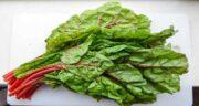 خواص برگ چغندر در طب سنتی ؛ فواید و خاصیت مصرف برگ چغندر