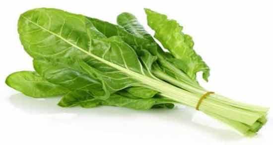 خواص برگ چغندر چیست ؛ فواید درمانی و دارویی مصرف برگ چغندر