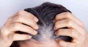 خواص جو دوسر برای سفیدی مو ؛ از بین بردن موهای سفید با مصرف جو دوسر