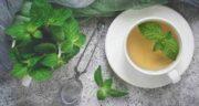 خواص دمنوش نعناع برای سرماخوردگی ؛ درمان و پیشگیری از سرماخوردگی با مصرف دمنوش نعناع