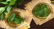 خواص دمنوش نعناع و عسل ؛ فواید مصرف دمنوش نعناع و عسل برای سلامتی و درمان بیماری ها
