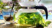 خواص دمنوش نعناع و چای سبز ؛ تاثیر مصرف دمنوش نعناع و چای سبز برای کاهش چربی و لاغری