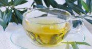 خواص دم کرده برگ زیتون ؛ لاغری و کاهش چبی های بدن با مصرف دم کرده برگ زیتون