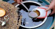 خواص شیره انگور قبل از بارداری ؛ فواید خوردن شیره انگور برای باردار شدن
