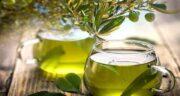 دمنوش برگ زیتون ؛ خواص دارویی و ضد سرطانی مصرف دمنوش برگ زیتون