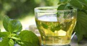 دمنوش نعناع برای سرفه ؛ درمان گیاهی و طبیعی برای کاهش سرفه با خوردن دمنوش نعناع