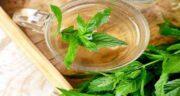 دمنوش نعناع در سرماخوردگی ؛ تاثیر خوردن دمنوش نعناع برای مقابله و درمان سرماخوردگی