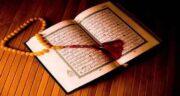 سنا در قرآن ؛ آیا اسم گیاه سنا در قرآن کریم آمده است؟