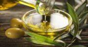 طرز تهیه عصاره برگ زیتون ؛ بهترین روش برای درست کردن عصاره برگ زیتون