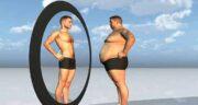 فواید برگ سنا برای لاغری ؛ خاصیت چربی سوزی و لاغر کنندگی برگ سنا