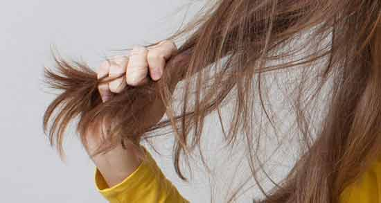 فواید برگ سنا برای مو ؛ تاثیر استفاده از برگ سنا برای شادابی و رشد موها