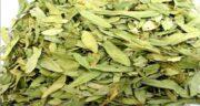 مضرات برگ سنا مکی ؛ استفاده از برگ سنا مکی چه ضرری برای سلامتی دارد