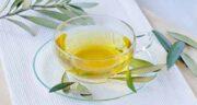مضرات چای برگ زیتون ؛ خوردن دمنوش و چای برگ زیتون چه ضرری برای سلامتی دارد