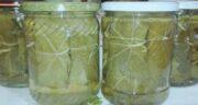کاربرد برگ انگور شور ؛ در چه مواردی برگ انگور شور استفاده می شود