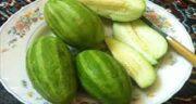 عکس کمبزه ؛ عکس میوه ی کمبزه برای شناخت و تشخیص بهتر ان در مصرف غذا