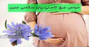 عرق کاسنی در ماه نهم بارداری ؛ خوردن عرق کاسنی در ماه چهارم بارداری