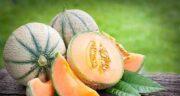 گرمک برای سرماخوردگی خوب است ؛ مصرف میوه گرمک برای سرماخوردگی خوبه