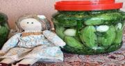 کاشت کمبزه ؛ ایا کاشت کمبزه در سرد سیر رشد میکند یا گرم سیر