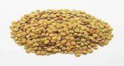 خواص عدس زرد ؛ خواص مصرف عدس زرد برای لاغری وچربی سوزی بدن
