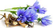 خواص عرق کاسنی و عسل ؛ فواید عرق کاسنی و عسل برای روشنایی پوست