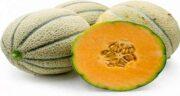 خواص گرمک برای کرونا ؛ پیشگیری از ویروس کرونا با مصرف میوه گرمک