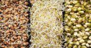 پودر عدس برای کم خونی ؛ دستور تهیه پودر عدس و مصرف ان برای کم خونی