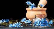 طریقه مصرف عرق کاسنی برای پوست ؛ نحوه مصرف عرق کاسنی برای زنان باردار