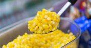 خواص ذرت بخارپز ؛ بررسی خواص و ارزش غذایی ذرت بخارپز
