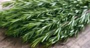 خواص رزماری برای کبد ؛ رزماری یکی از گیاهان دارویی مفید برای سم زدایی کبد