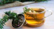 خواص رزماری در چای ؛ تقویت و سلامت سیستم ایمنی بدن با ریختن رزماری در چای