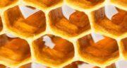 خواص عسل زوروا ؛ آشنایی با خواص درمانی و دارویی عسل زوروا برای سلامتی