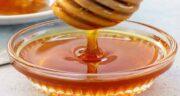 خواص عسل گارچی ؛ بررسی خواص درمانی و دارویی عسل گارچی برای سلامتی بدن