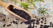 خواص مالیدن روغن سیاه دانه به کمر ؛ درمان خانگی کمر درد با روغن سیاه دانه