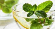خواص چای نعناع در بارداری ؛ فواید مصرف چای نعناع برای دوران بارداری