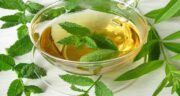 دمنوش نعناع و به لیمو ؛ درمان سینه درد و سرفه با خوردن دمنوش نعناع و به لیمو