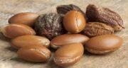 روغن آرگان در طب سنتی ؛ فواید مصرف روغن آرگان از دیدگاه طب سنتی