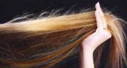 روغن آرگان و موخوره ؛ درمان و از بین بردن موخوره مو با روغن آرگان