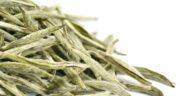 طرز تهیه چای سفید برای لاغری ؛ نحوه درست کردن چای سفید برای کاهش وزن