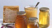 عسل گارچی چیست ؛ آشنایی کامل به عسل گارچی و خواص درمانی آن