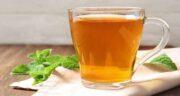 مضرات چای نعناع در بارداری ؛ خطرات مصرف چای نعناع برای زنان باردار