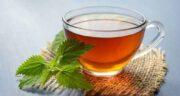 عوارض چای نعناع ؛ مصرف بیش از حد چای نعناع چه عوارضی برای بدن دارد