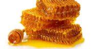 عکس از عسل طبیعی ؛ مجموعه تصاویر زیبا از عسل طبیعی