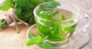 فواید دمنوش پونه و نعنا ؛ خواص فراوان مصرف دمنوش پونه و نعنا برای تقویت ایمنی بدن